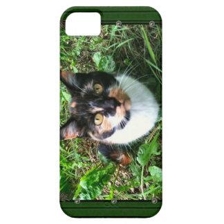Sinders I phone case