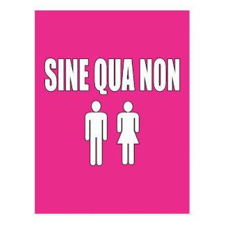 Sine Qua Non Romantic Latin Quote Valentine's Day Postcards