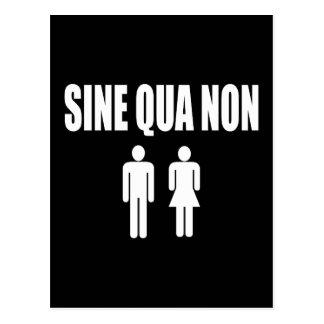 Sine Qua Non Romantic Latin Quote Valentine's Day Postcard