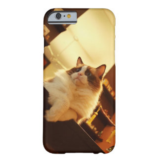 Singapore 6 barely there iPhone 6 case