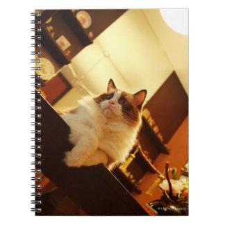 Singapore 6 notebooks