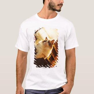 Singapore 6 T-Shirt