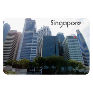 singapore city magnet