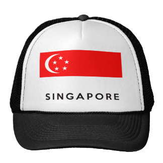 singapore flag country text name cap