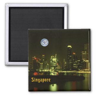 Singapore night lights magnets