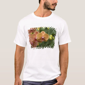 Singapore Sanskrit for Lion City). National 2 T-Shirt