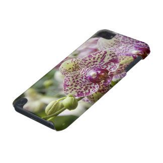 Singapore (Sanskrit for Lion City). National iPod Touch 5G Covers