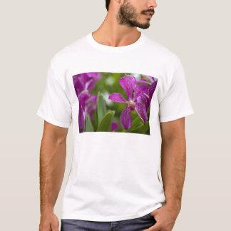 Singapore Sanskrit for Lion City). National T-Shirt