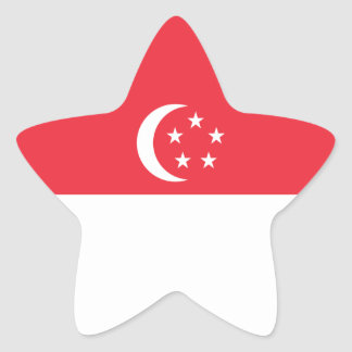 Singapore/Singaporean Flag Star Sticker