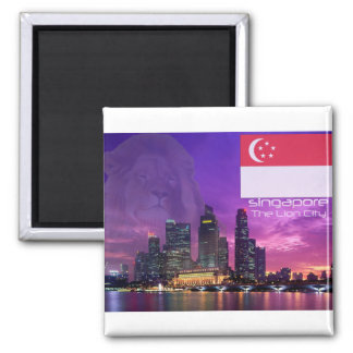 Singapore Square Magnet