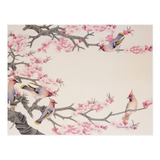 Singing Birds in Spring Postcard