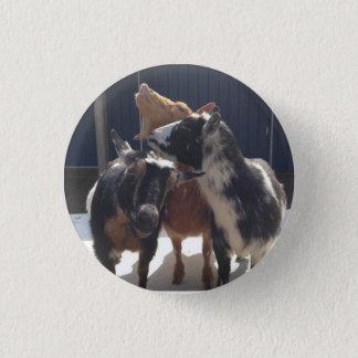Singing Goats 3 Cm Round Badge