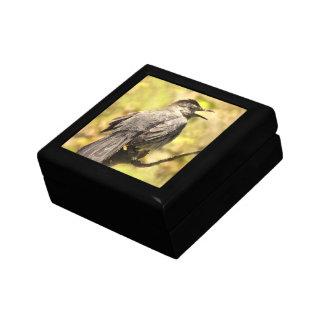 Singing Gray Catbird Keepsake Box