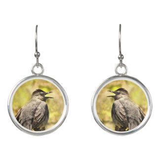 Singing Gray Catbird Necklace Earrings