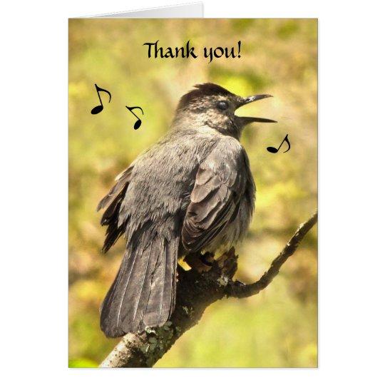 Singing Grey Catbird Thank You Card