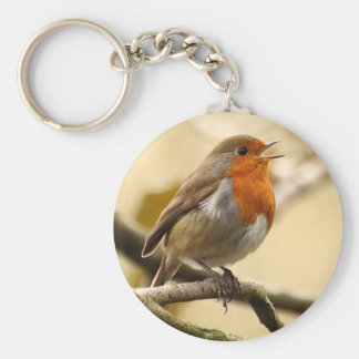 Singing Robin Basic Round Button Key Ring