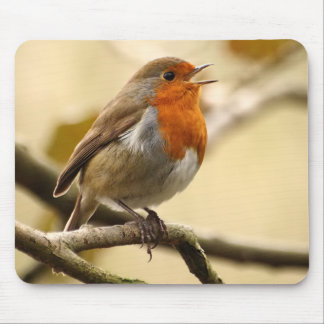 Singing Robin Mouse Mat
