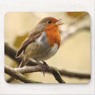 Singing Robin Mouse Mat