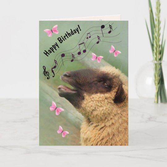 singing sheep happy birthday card  zazzlecouk