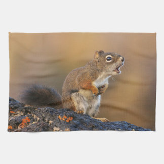 Singing Squirrel Tea Towel