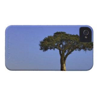 Single Acacia tree on grassy plains, Masai Mara, Case-Mate iPhone 4 Cases