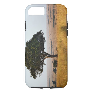 Single acacia tree on grassy plains, Masai Mara, iPhone 7 Case
