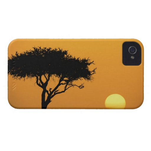 Single Acacia tree silhouetted at sunrise, Masai Blackberry Cases