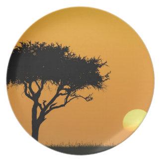 Single Acacia tree silhouetted at sunrise, Masai Plate