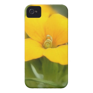 Single Bloom - Wallflower iPhone 4 Case-Mate Cases