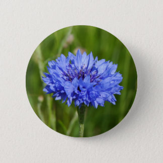 Single Blue Cornflower in green English Meadow 6 Cm Round Badge
