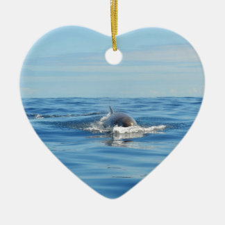 Single Bottlenose Whale Ceramic Heart Decoration