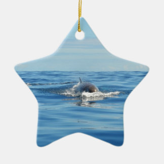 Single Bottlenose Whale Ceramic Star Decoration