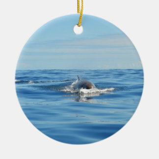 Single Bottlenose Whale Round Ceramic Decoration