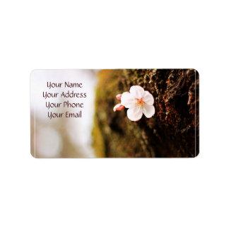 Single Cherry Blossom Tree Trunk Sakura Spring Address Label