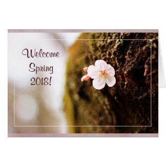 Single Cherry Blossom Tree Trunk Sakura Spring Greeting Card