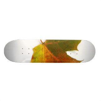 Single Coloured Maple Leaf On White Background Custom Skate Board