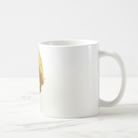 Single Conker On White Background Coffee Mug