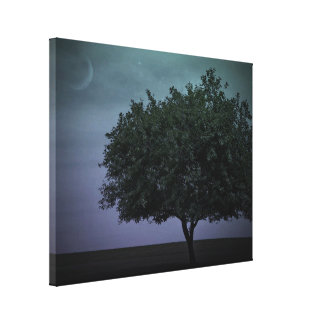Single Country Tree Stretched Canvas Print