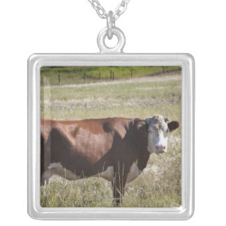 Single Cow In A Field Silver Plated Necklace