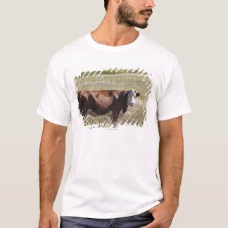 Single Cow In A Field T-Shirt