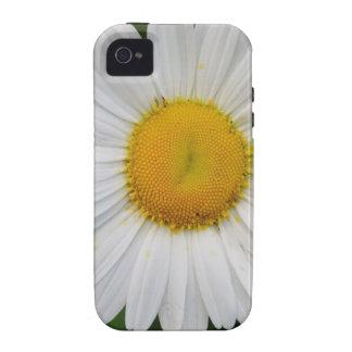 Single Daisy Flower iPhone 4/4S Case