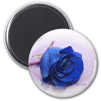 Single Dark Blue Rose, pale background Magnet