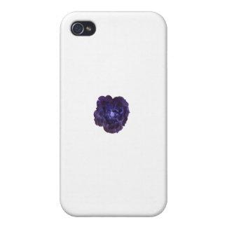 Single Dark Blue Tea Rose iPhone 4/4S Cases