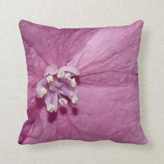 Single floret of a Hydrangea Cushion