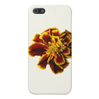 Single French Marigold iPhone 5 Cases