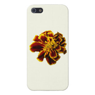 Single French Marigold Case For iPhone 5