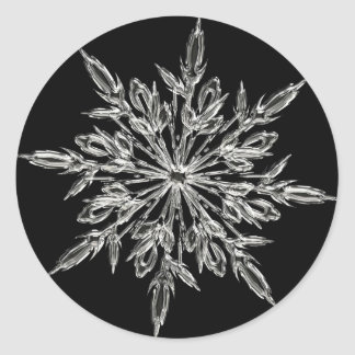 Single Ice Crystal on Black Classic Round Sticker
