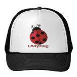 Single Ladybug Cap