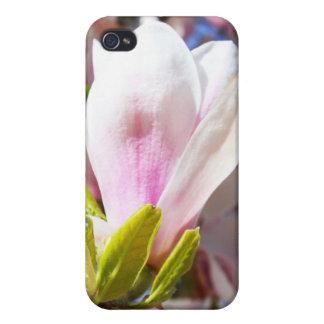 Single Magnolia Case For iPhone 4