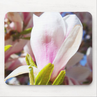 Single Magnolia Mouse Pad